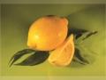 citron_A5